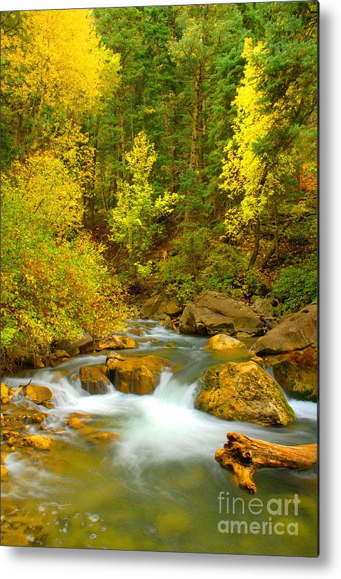 Utah Metal Print featuring the photograph Autumn On Big Cottonwood River by Dennis Hammer