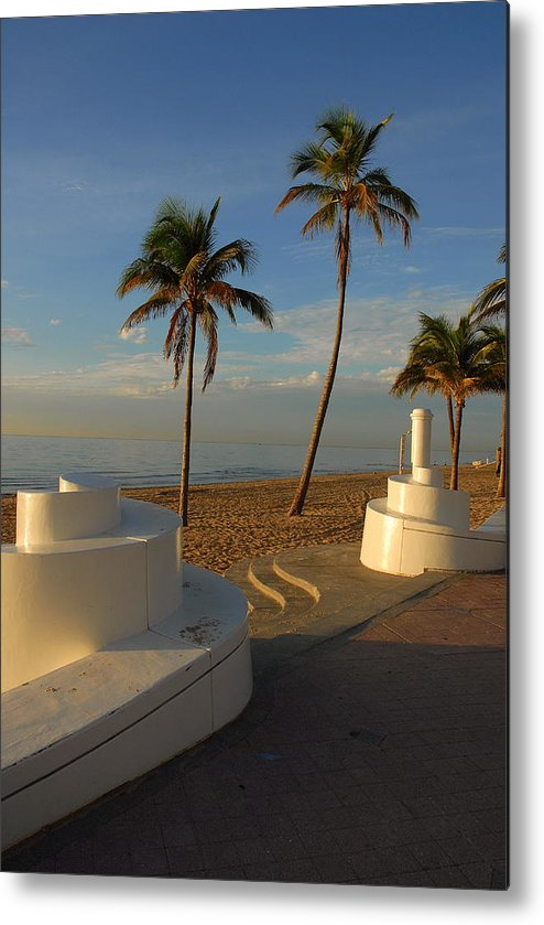 Fort Lauderdale Metal Print featuring the photograph Boardwalk Palms by Zachary Liaros