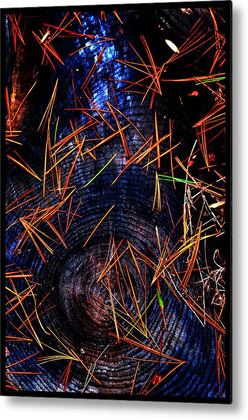 Western North Carolina Metal Print featuring the photograph Asian Fir Needles On Ancient Round by Susanne Still