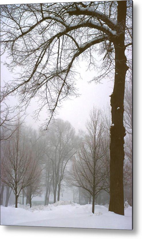 Fog Metal Print featuring the photograph Foggy Morning Landscape 10 by Steve Ohlsen