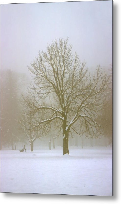 Nature Metal Print featuring the photograph Foggy Morning Landscape 7 by Steve Ohlsen