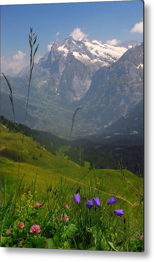 Grindelwald Metal Print featuring the photograph Mount Wetterhorn And The Grindelwald by Anne Keiser