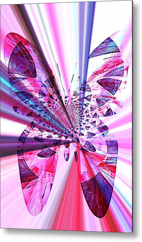 Rays Metal Print featuring the photograph Rays Of Butterfly by Amanda Eberly-Kudamik