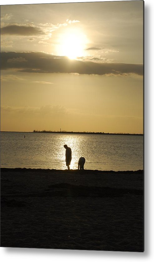 Sunset Metal Print featuring the photograph Silhouette by Michael L Gentile