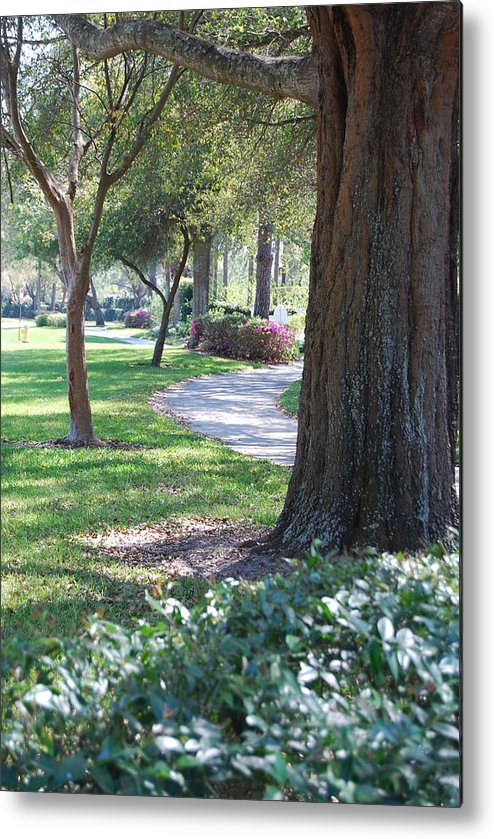 Walk Way Metal Print featuring the photograph Simple Side Walk by Michael L Gentile