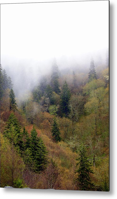 Fog Metal Print featuring the photograph Smoky Mount Vertical by Marty Koch