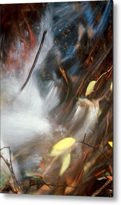 Leaves Metal Print featuring the photograph Swept Away by Lynard Stroud