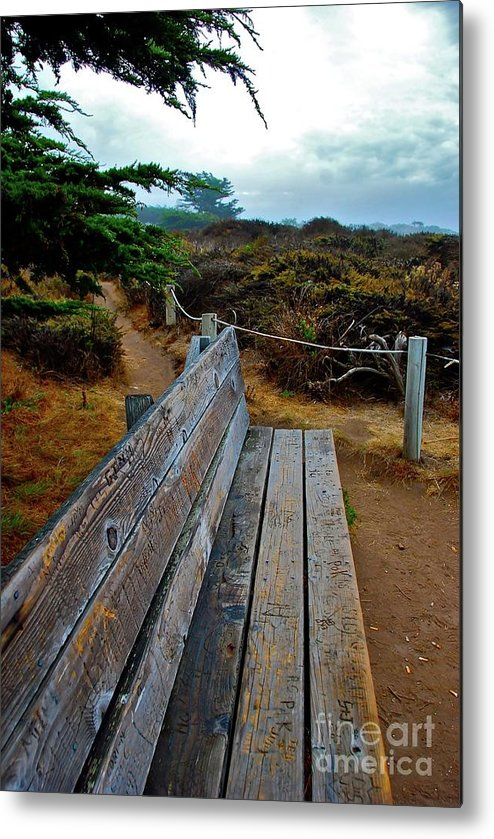 Bench Metal Print featuring the photograph The Bench by Lori Leigh