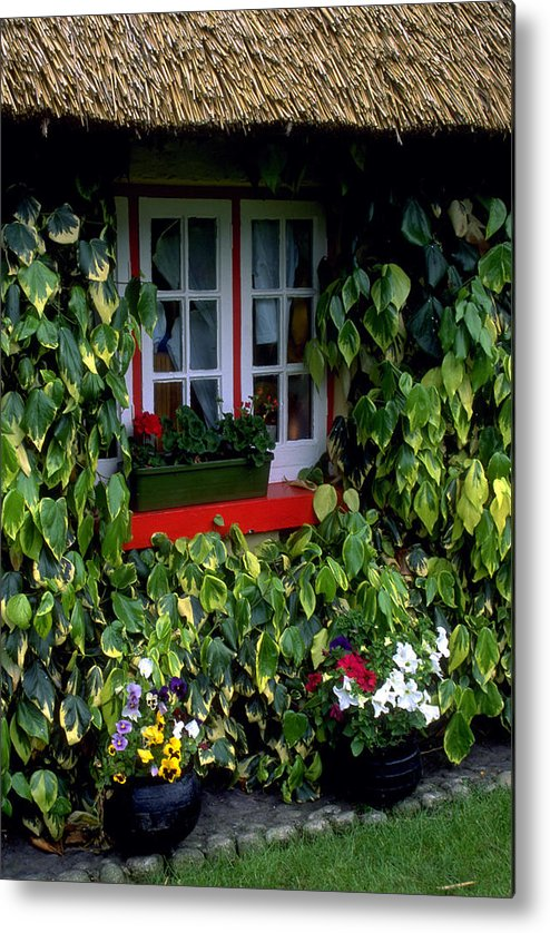 Ivy Metal Print featuring the photograph The Perfect Cottage by Carl Purcell