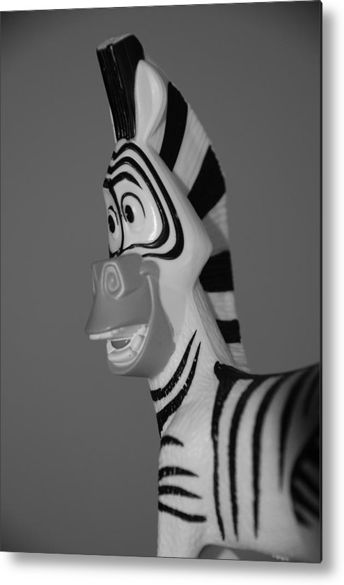 Black And White Metal Print featuring the photograph Toy Zebra by Rob Hans