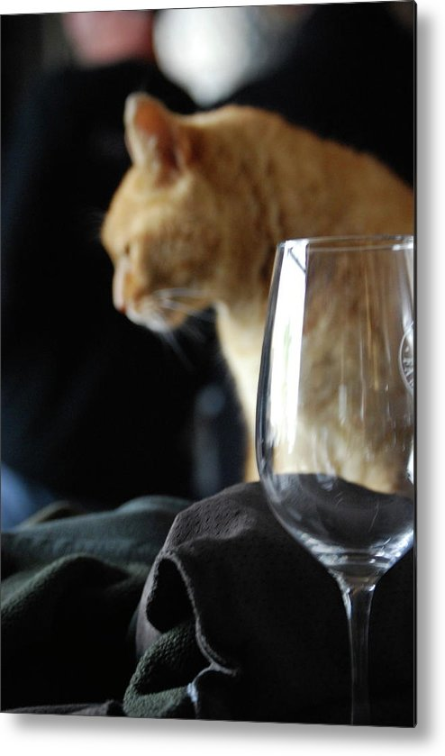 Wine Metal Print featuring the photograph Two Of My Favorite Things by Lori Leigh