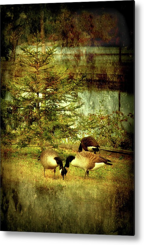 Autumn Metal Print featuring the photograph By The Little Tree - Lake Carasaljo by Angie Tirado