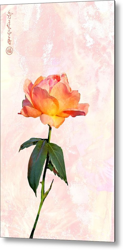 English Garden Rose Metal Print featuring the digital art English Garden Rose by Elaine Weiss