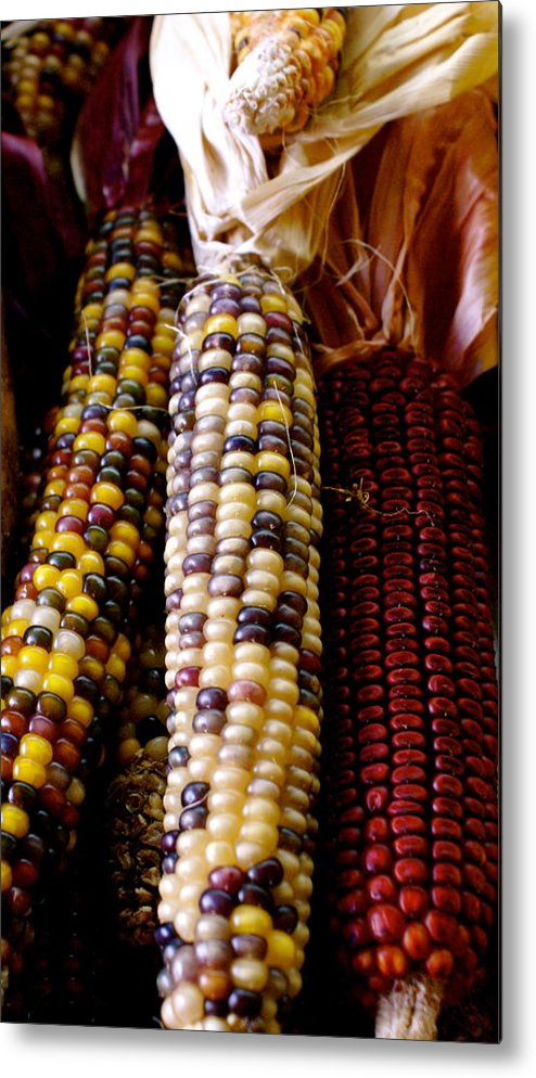 Farmers Market Metal Print featuring the photograph Indian Corn by Sonja Anderson