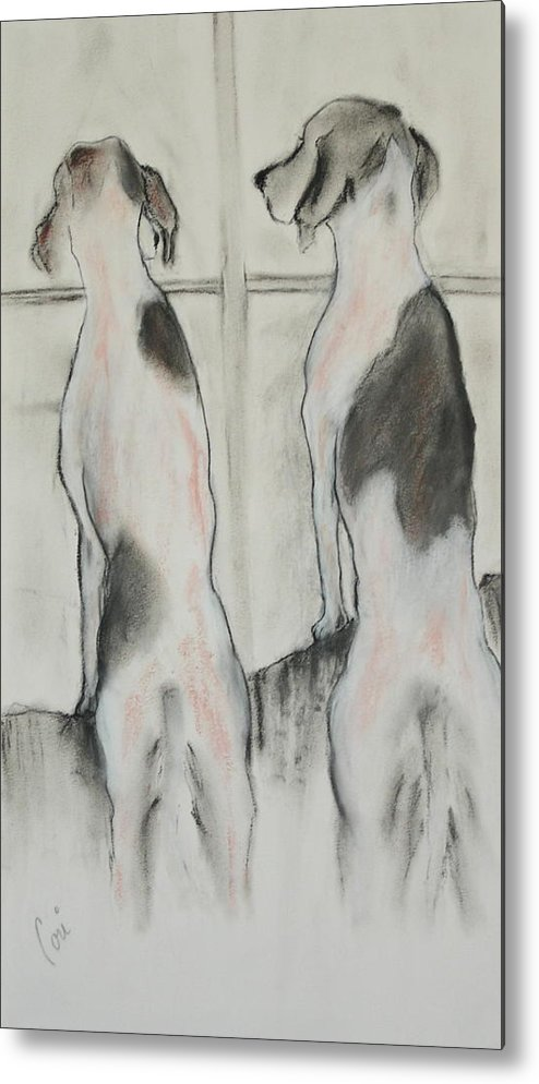Pastel Metal Print featuring the drawing Point Of View by Cori Solomon