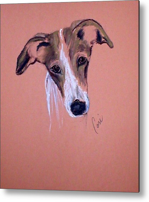 Whippet Metal Print featuring the drawing All Ears by Cori Solomon