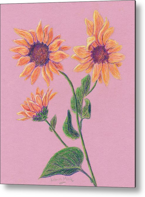 Flowers Metal Print featuring the drawing Sun Flowers by Dawn Marie Black