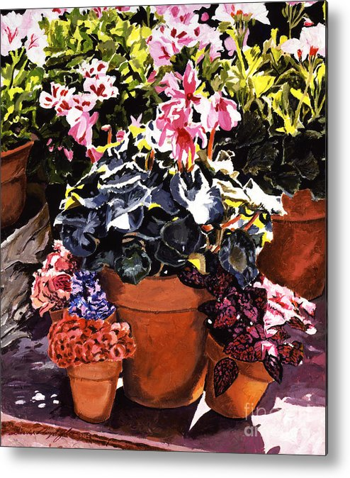 Gardenscapes Metal Print featuring the painting Sunshine And Flowerpots by David Lloyd Glover