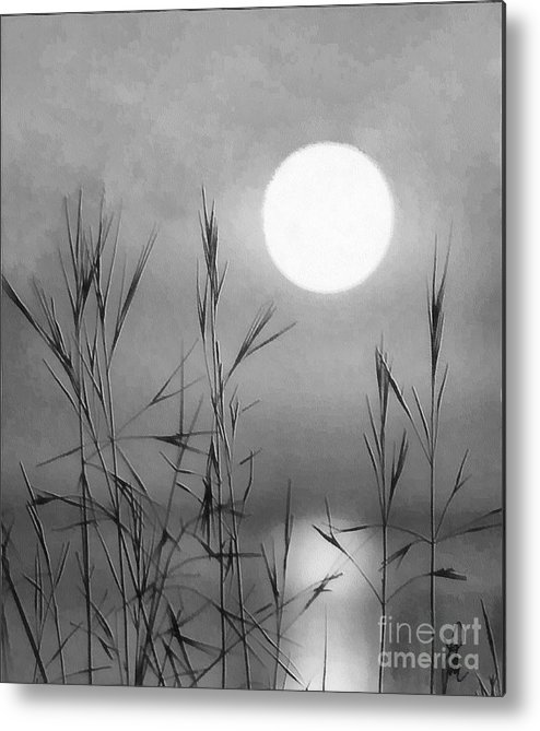 Full Moon Metal Print featuring the photograph At The Full Moon by Dragica Micki Fortuna