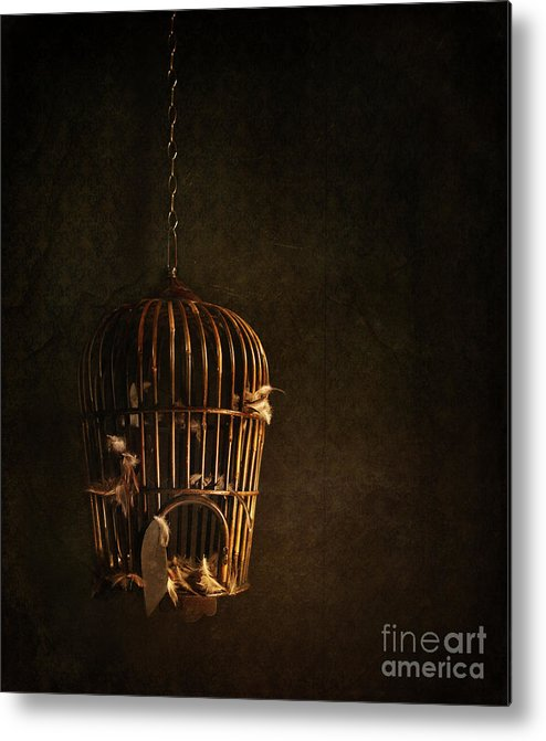 Atmospheric Metal Print featuring the photograph Old Wooden Bird Cage With Feathers by Sandra Cunningham