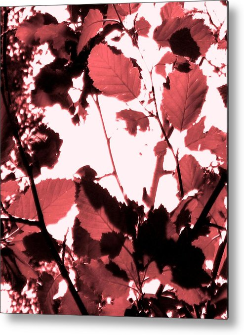 Forest Metal Print featuring the photograph Red Leaves by Amara Roberts
