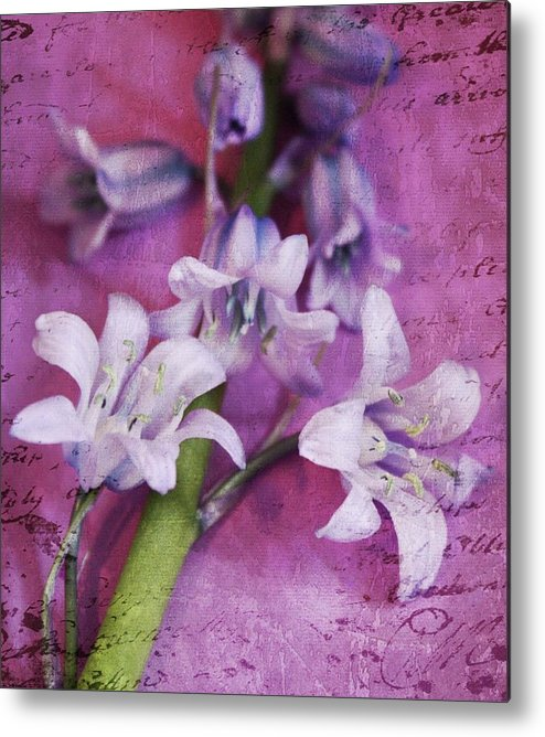 Spring Flowers Metal Print featuring the photograph Bell Flowers by Cathie Tyler