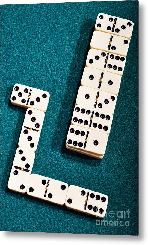 Domino Metal Print featuring the photograph Domino by Luis Alvarenga