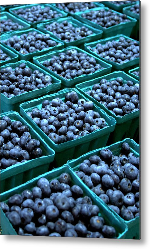 Blueberry Metal Print featuring the photograph Blueberry Season In Maine by Wendy Barrett