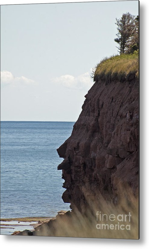 Rocks Metal Print featuring the photograph Facial Formation by Ruth H Curtis