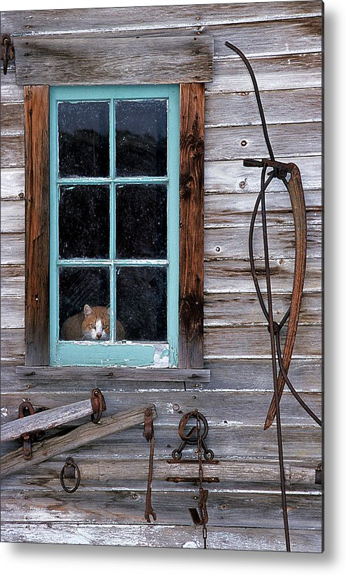Usa Metal Print featuring the photograph Farmhand by Doug Davidson