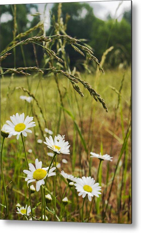 Oregon Metal Print featuring the photograph Fresh Rain Fresh Flowers by Nathan Anglin