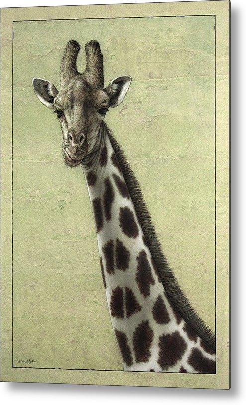Giraffe Metal Print featuring the painting Giraffe by James W Johnson