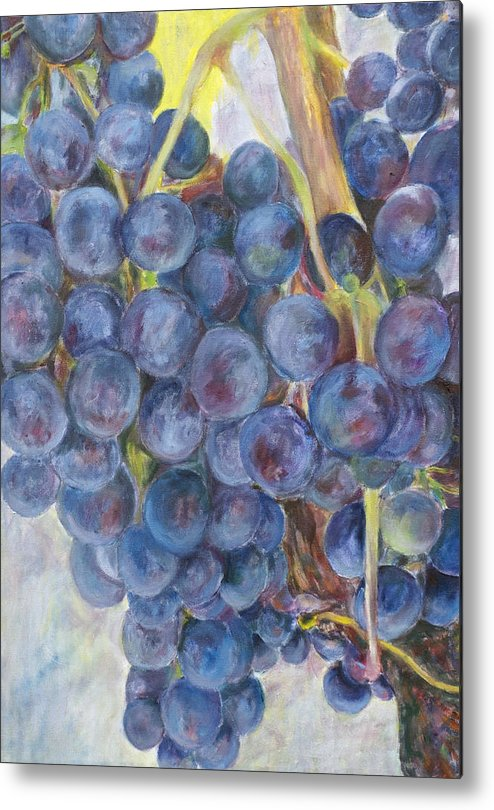 Grapes Metal Print featuring the painting Napa Grapes 1 by Nick Vogel