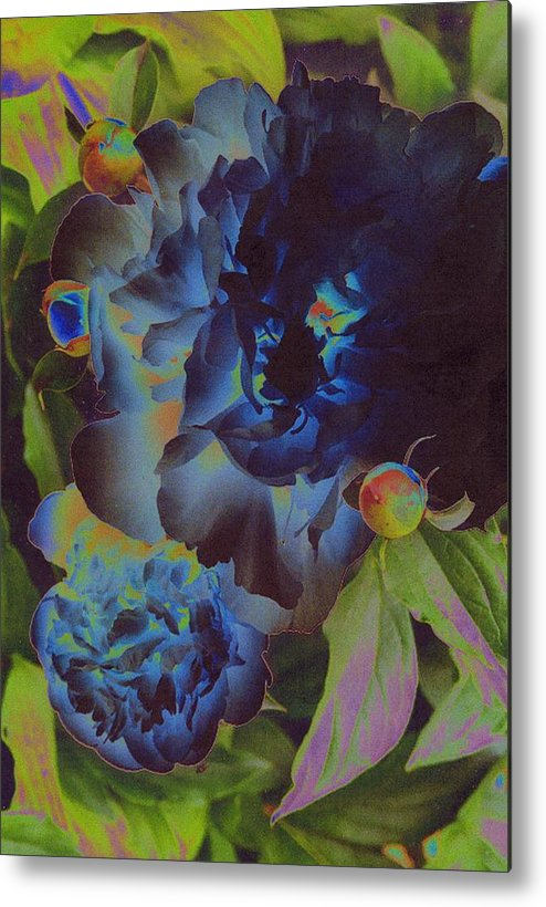 Peony Metal Print featuring the digital art Peony 1 by First Star Art