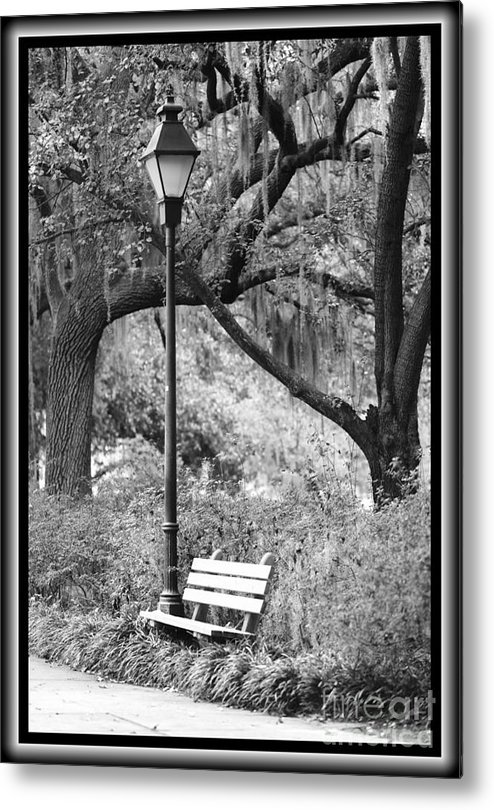 Black And White Metal Print featuring the photograph Savannah Afternoon - Black And White by Carol Groenen