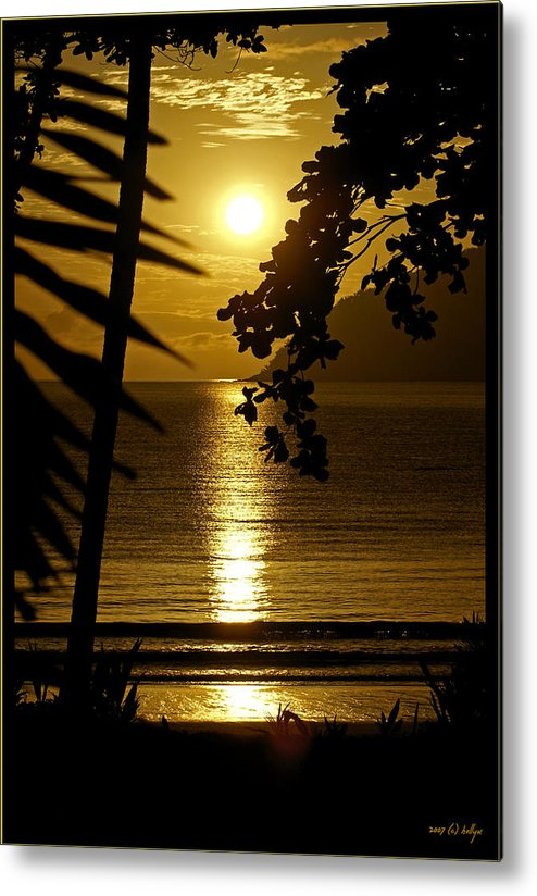 Landscapes Metal Print featuring the photograph Shimmer by Holly Kempe