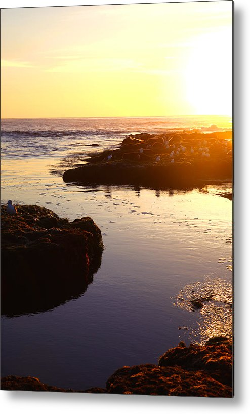 Beach Metal Print featuring the photograph Washing Out by Andrew Rossman