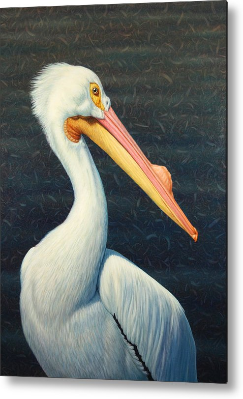 Pelican Metal Print featuring the painting A Great White American Pelican by James W Johnson