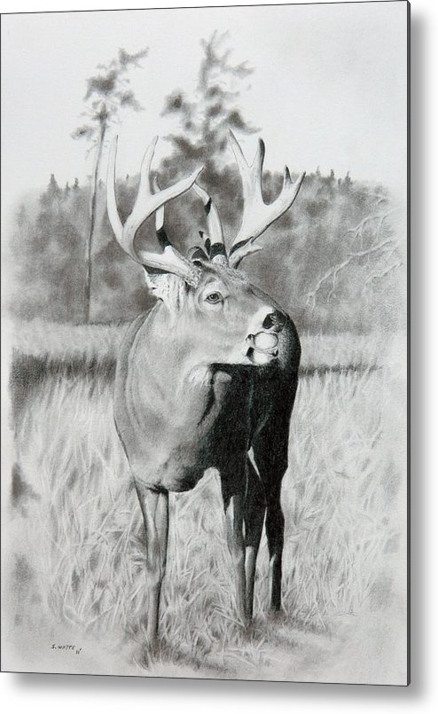 Animal Metal Print featuring the drawing Apple Snack by Stan White