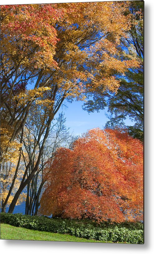 Autumn Metal Print featuring the photograph Autumn Day by Steven Natanson