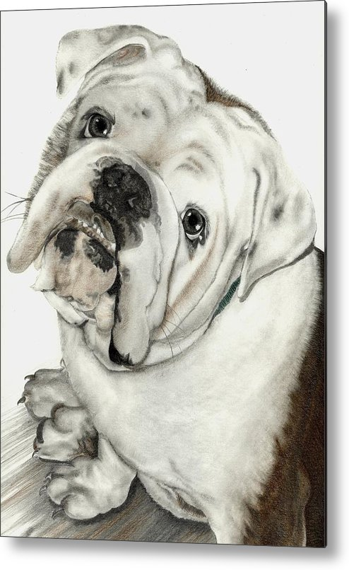 Pets Metal Print featuring the mixed media Dean' Buddy by Lisa Bell