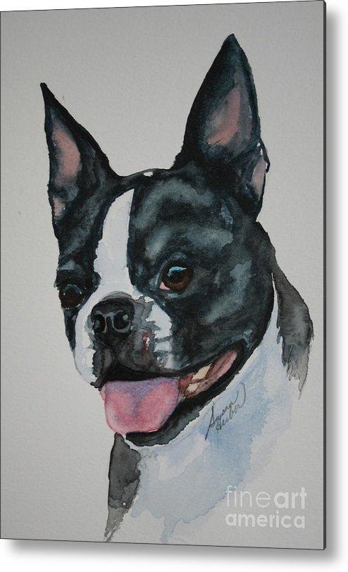 Boston Terrier Metal Print featuring the painting Devil Ears by Susan Herber
