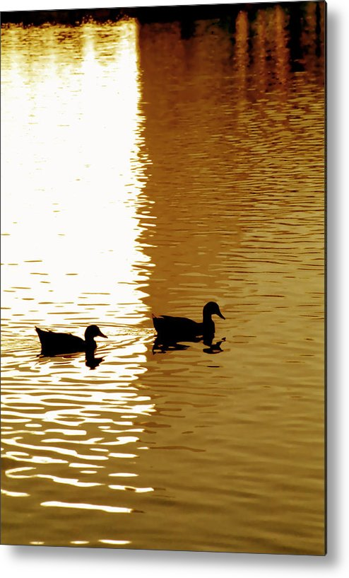 Silhouettes Metal Print featuring the photograph Ducks On Pond 2 by Steve Ohlsen