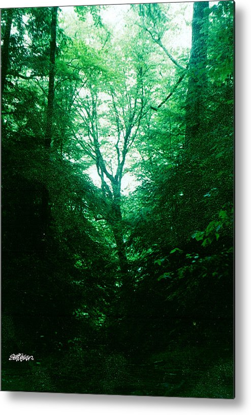 Emerald Metal Print featuring the photograph Emerald Glade by Seth Weaver