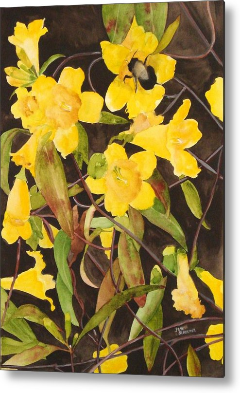 Flowers Metal Print featuring the painting Jessamine Jungle by Jean Blackmer