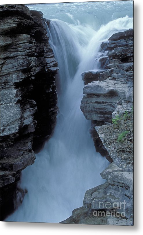 Kicking Horse River Metal Print featuring the photograph Kicking Horse River by Sandra Bronstein