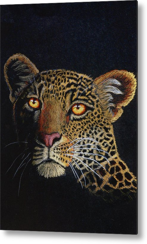 Leopard Metal Print featuring the drawing Leopard In The Dark by Lorraine Foster