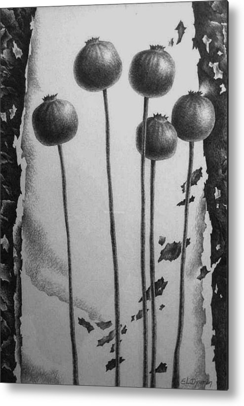 Maki Metal Print featuring the drawing Maki by Yelena Revis