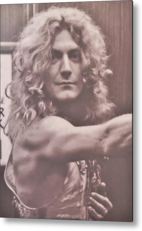 Robert Plant.led Zeppelin Metal Print featuring the photograph Robert Plant by Donna Wilson
