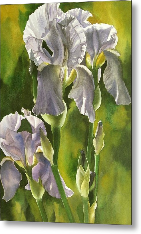 Flower Metal Print featuring the painting Summer Irises by Alfred Ng